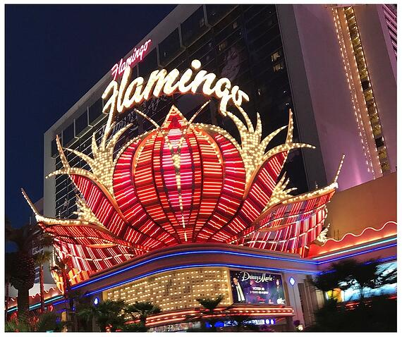 Travel-Nurse-Las-Vegas-Flamingo