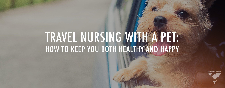 Travel nursing with a pet travel nursing with a dog