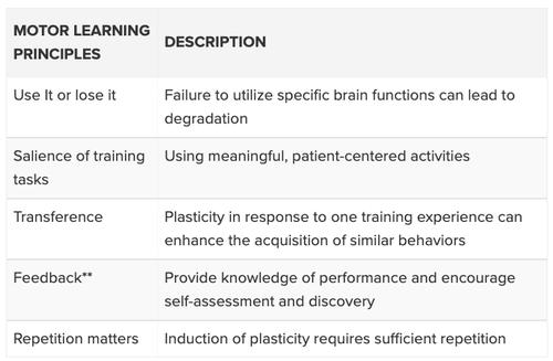 Motor learning principles